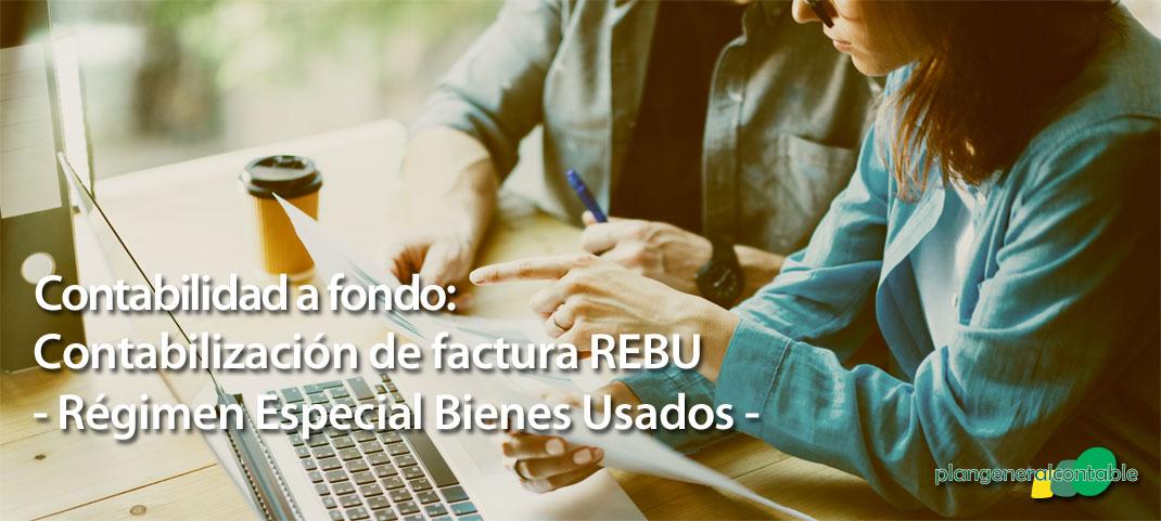 Tratamiento contable del Régimen Especial de Bienes Usados - REBU-