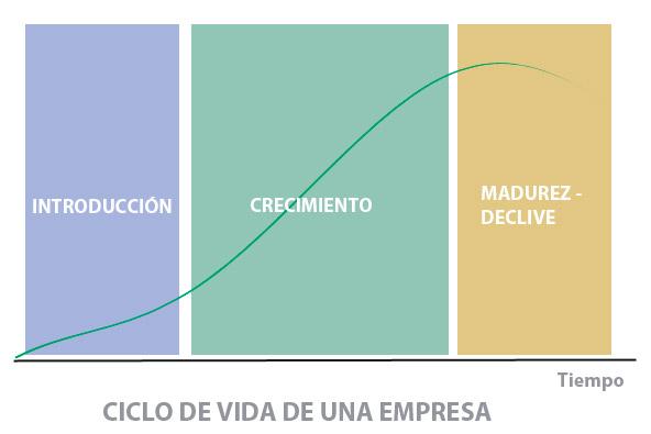 Gráfico de las distintas fases que abarcan el ciclo de vida de una empresa