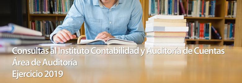 Actuación del auditor de cuentas y la emisión de su informe de auditoría en rela...