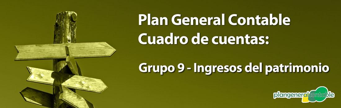 Grupo 9 - Ingresos imputados al patrimonio neto